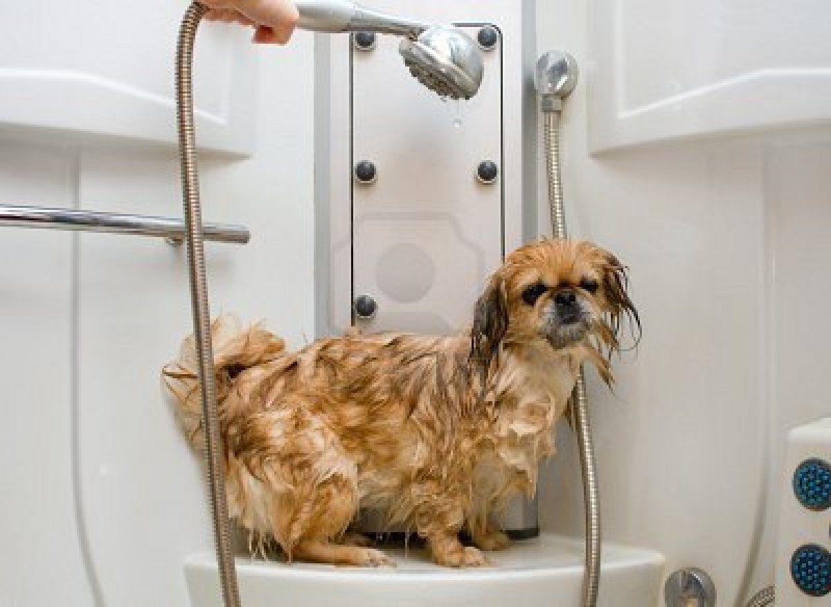 para el secado puedes ayudarte de un secador de pelo