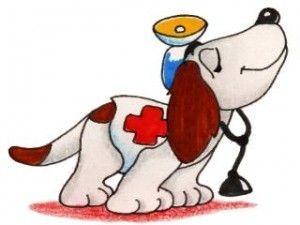 perro medico