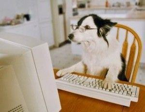 perro escritor